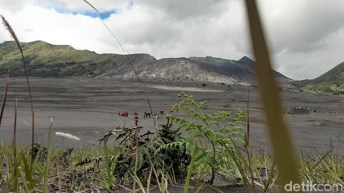 Selama pandemi Corona, wisata Gunung Bromo ditutup total. Kini para pelaku wisata mendesak pemerintah atau dinas terkait segera membukanya kembali.