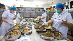China Dorong Penggunaan Obat Tradisional di Tengah Pandemi Corona