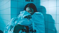 Viral Tren Video Maria Challenge, Dihujat Karena Dianggap Lecehkan Idol KPop