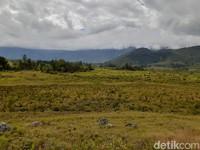Kini Lembah Baliem terkenal sebagai salah satu destinasi surga di Papua. (Hari Suroto/Istimewa)