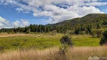 Dulu Lembah Baliem Disebut dengan Nama Shangri-La
