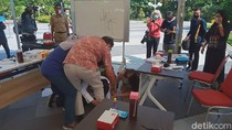 Video Risma Bersujud Memohon Maaf pada Dokter di Surabaya