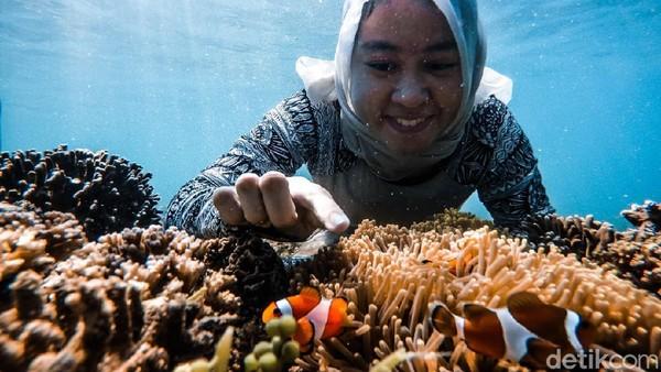 Salah seorang pengunjung dari Surabaya bernama Diah Nirmala Apsari, mengaku kagum dengan keindahan bawah laut di Pulau Gili Ketapang. Dia berharap ke depan pulau ini semakin bersih dan nyaman dikunjungi. (M Rofiq/detikcom)