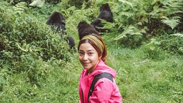 Salah satu foto Nikita di Rwanda menunjukan kebersamaannya dengan 3 Gorila. Wah kok bisa ya? (Nikita WIlly/Instagram)