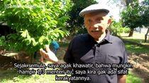 Manuver Amien Rais soal Kriteria Menteri Jokowi Dijawab Koalisi