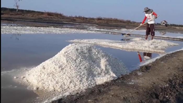 Petani garam di Brebes