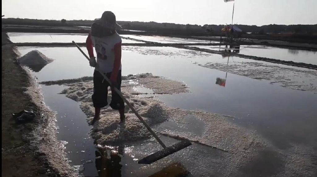 Pabrik Pengolahan Garam Rp 80 M Bakal Berdiri di Brebes