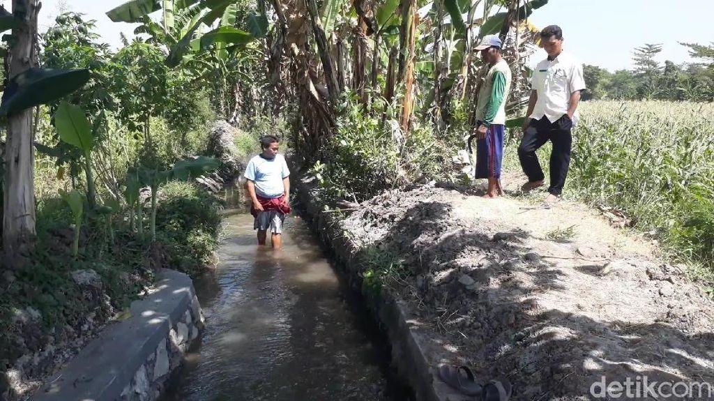 Kerap Ditolak Ekskavasi Situs Purbakala, Dinas Pasuruan Tunggu Surat Resmi