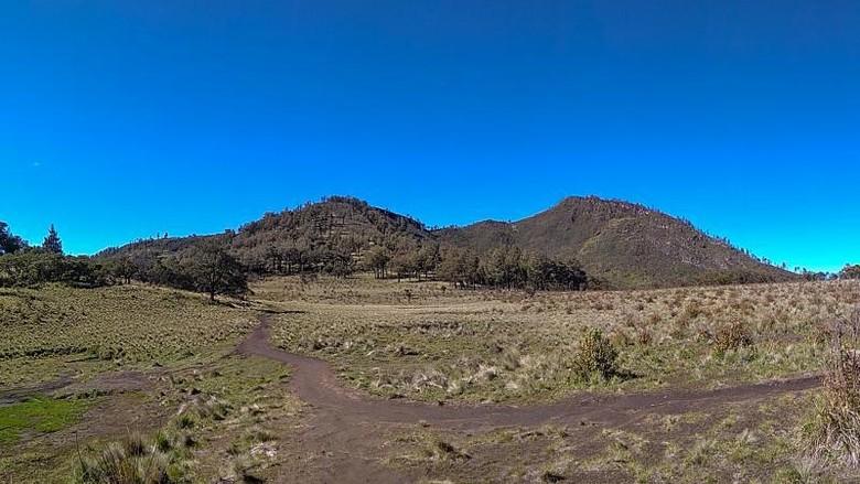 Sabana Gunung Lawu.