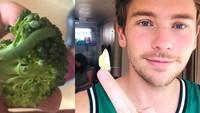 Temukan 7 Ulat di Brokoli, Pria Ini Malah Memeliharanya Jadi Kupu-kupu