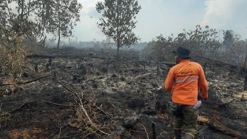 Sudah 2 Hari, Tim Manggala Agni Berjibaku Padamkan Karhutla di Rupat Riau