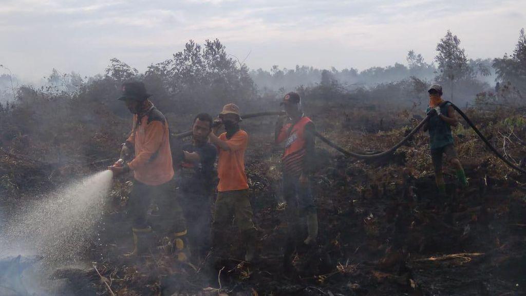 Lahan Terbakar di Riau Capai 468 Ha, 6 Orang Ditangkap