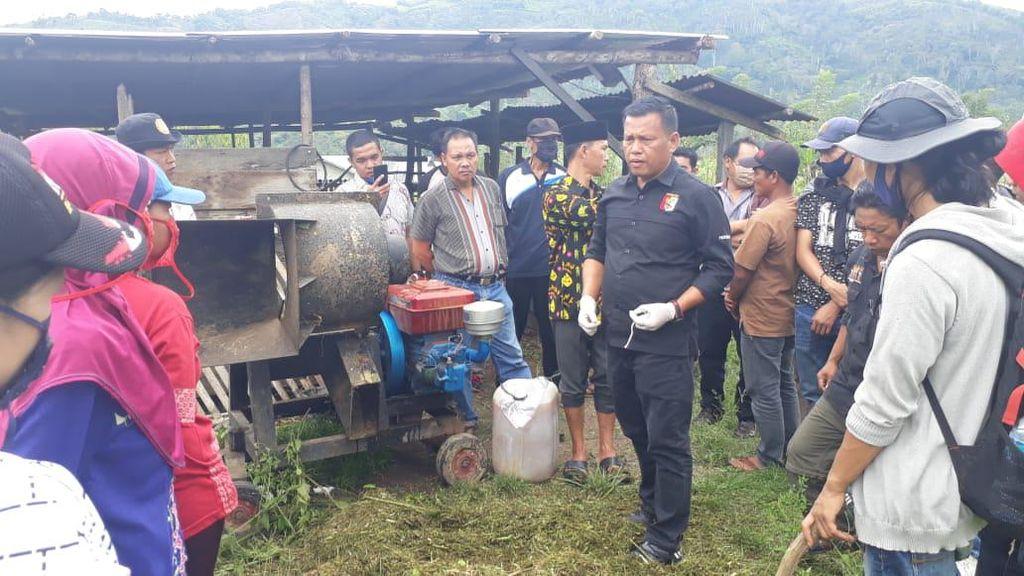 Suku Rejang di Bengkulu Bertani-Berkebun Agar Ada Stok Pangan Selama Pandemi
