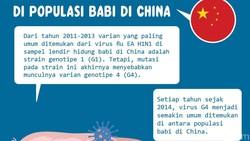 Ilmuwan mengungkap virus varu setelah Corona yang potensial memicu pandemi. Masih berkerabat dengan flu babi, virus baru tersebut dinamakan virus G4.