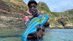 Ikan Avatar dengan Warna-warni Terang Ini Bisa Dimakan Lho!