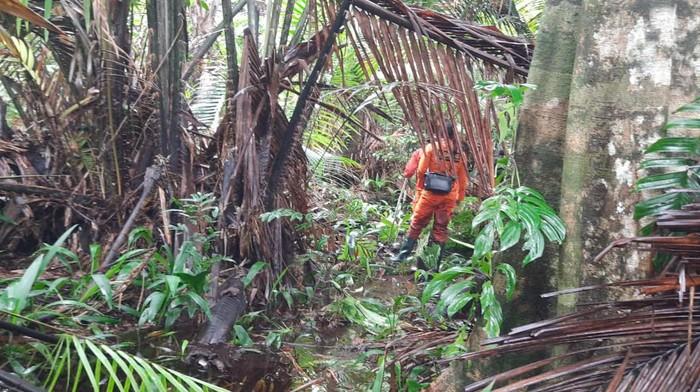 Tim SAR Timika melakukan pencarian Syarif, pemuda yang tersesat di hutan saat berburu
