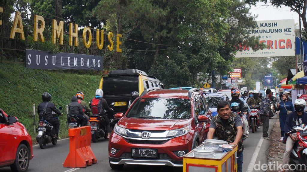 New Normal, Kawasan Lembang Bandung Barat Kembali Diserbu Wisatawan