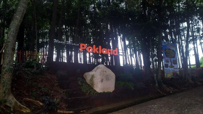Wana Wisata Pinus Pokland