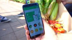 Pasar Rawan Corona, Aplikasi Jual Sayuran TaniIn Jadi Pilihan