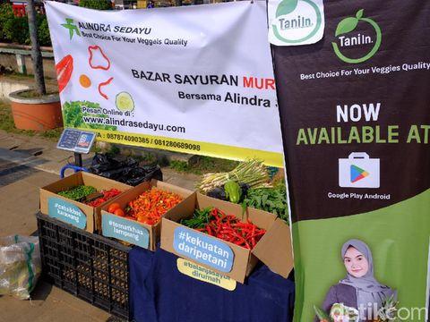 Aplikasi Belanja Sayur TaniIn (Tani Indonesia)