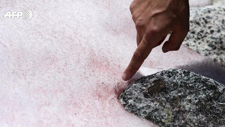Salju pink di Pegunungan Alpen.
