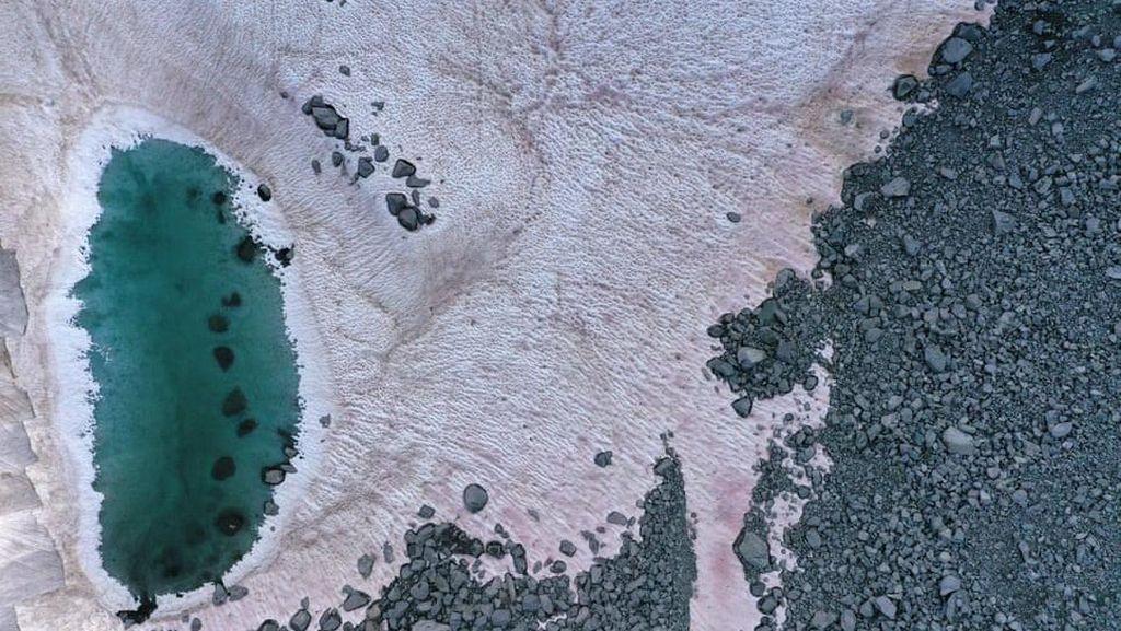 Salju di Pegunungan Alpen Berubah Warna Jadi Pink