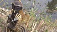 Kades Ungkap Angkernya Embung Tempat 2 Jenglot Ditemukan di Sragen