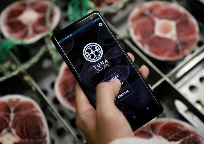 Aplikasi Pemindai Ikan Tuna
