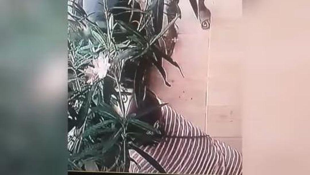 Miris! Emak-emak yang Curi Bunga di Ketandan Malioboro Bawa 2 Bocah