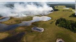 Rekor! Siberia Makin Hangat di Bulan Juni