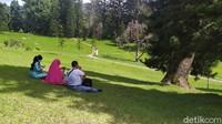 Buka Kembali di Momen Serba 7, Kebun Raya Cibodas Batasi Pengunjung