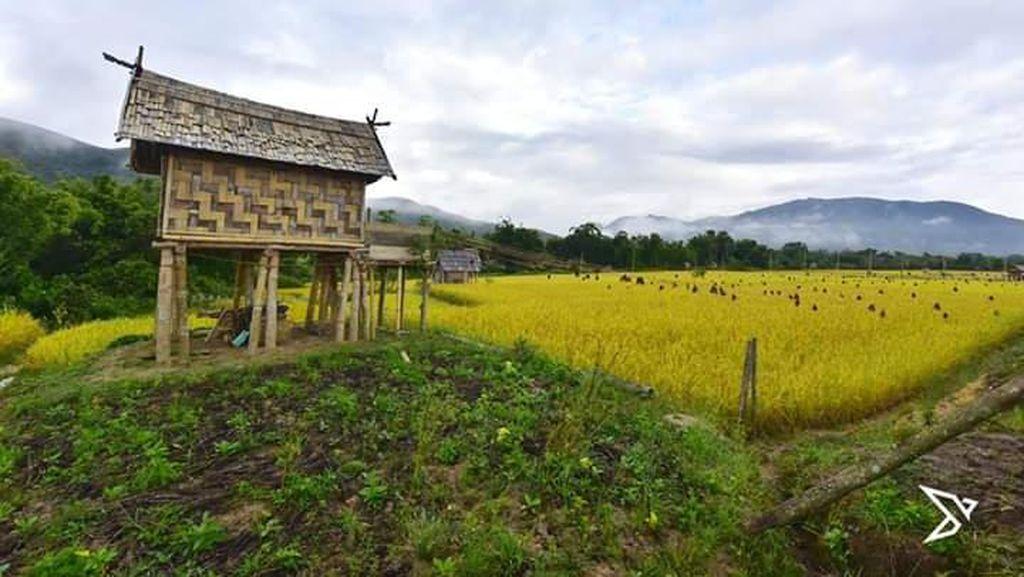 17 Desa di Luwu Utara Lepas Status Desa Sangat Tertinggal