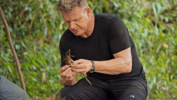 Gordon Ramsay cicip tarantula bakar