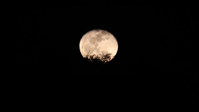 Bulan Purnama stroberi terlihat indah di langit Bandung, Jawa Barat, Selasa (7/7/2020) malam.