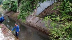 Cerita Pedagang Lihat Ular Sanca Seminggu Sebelum ABG di Tangsel Tewas Dililit