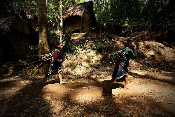 Karena keresahan Suku Baduy, baru-baru ini mereka membuat petisi untuk meminta Presiden agar menghapus wilayahnya sebagai destinasi wisata. Mereka merasa terganggu dengan banyaknya wisatawan yang datang dan pencemaran lingkungan menjadi marak terjadi. Getty Images/Ulet Ifansasti