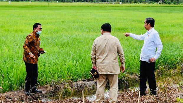 Presiden Joko Widodo beserta rombongan meninjau pembangunan peningkatan jaringan reklamasi rawa di Tahai Baru, Kabupaten Pulang Pisau, Kamis (9/7/2020). (Biro Pers Sekretariat Presiden/Laily Rachev)