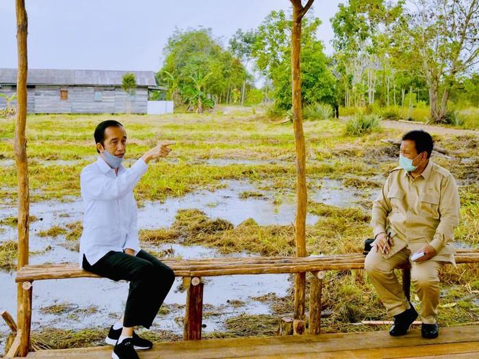 Presiden Jokowi dan Menhan Prabowo Subianto berbincang di proyek lumbung pangan di Kalteng