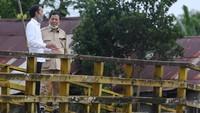 Peran Prabowo hingga TNI di Proyek Lumbung Pangan Terungkap