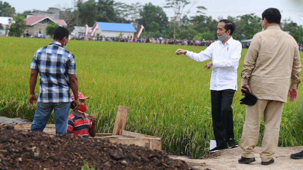 Moeldoko: Food Estate Terapkan Sistem Bagi Hasil Untuk Swasta-Petani