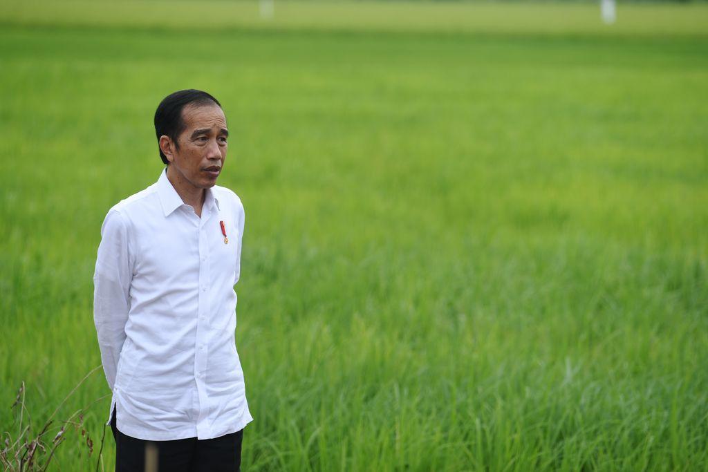 Presiden Joko Widodo (kanan) didampingi Menteri Pertahanan Prabowo Subianto (kiri), Menteri Pertanian Syahrul Yasin Limpo (kedua kiri) dan Menteri PUPR Basuki Hadimuljono (kedua kanan) meninjau lahan yang akan dijadikan