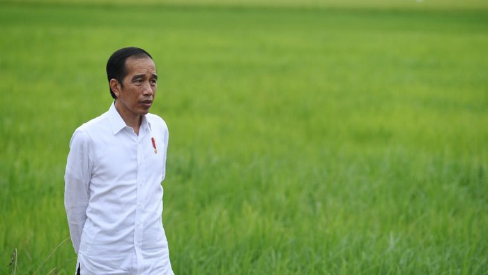 Presiden Joko Widodo (kanan) didampingi Menteri Pertahanan Prabowo Subianto (kiri), Menteri Pertanian Syahrul Yasin Limpo (kedua kiri) dan Menteri PUPR Basuki Hadimuljono (kedua kanan) meninjau lahan yang akan dijadikan Food Estate atau lumbung pangan baru di Kapuas, Kalimantan Tengah, Kamis (9/7/2020). Pemerintah menyiapkan lumbung pangan nasional untuk mengantisipasi krisis pangan dunia. ANTARA FOTO/Hafidz Mubarak A/aww.