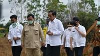 Mentan hingga Prabowo Dampingi Jokowi Cek Proyek Lumbung Pangan