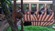 Wisata di Bali Ketat Terapkan Protokol Kesehatan