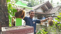 Potret Kampung Madu di Ciamis