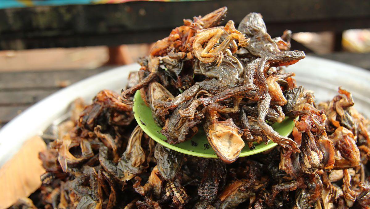 Makanan Ekstrem di Phnom Penh