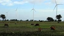 New Normal dan Ceruk Disrupsi Sumber Energi