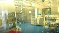 Langka, Penampakan Bagian Dalam Laboratorium Virus Wuhan