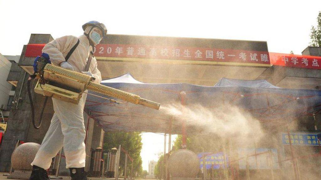 WHO Kirim Tim ke China untuk Selidiki Asal-Usul Virus Corona