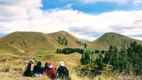 Pemandangannya seperti setting film di Eropa atau Selandia Baru, padahal lagi di Bondowoso. Traveler pun bisa berfoto Instagramable di sini. (Chuk Shatu Widarsha/detikcom)